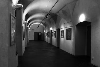 Reportáž | Z kutury | Dům umění